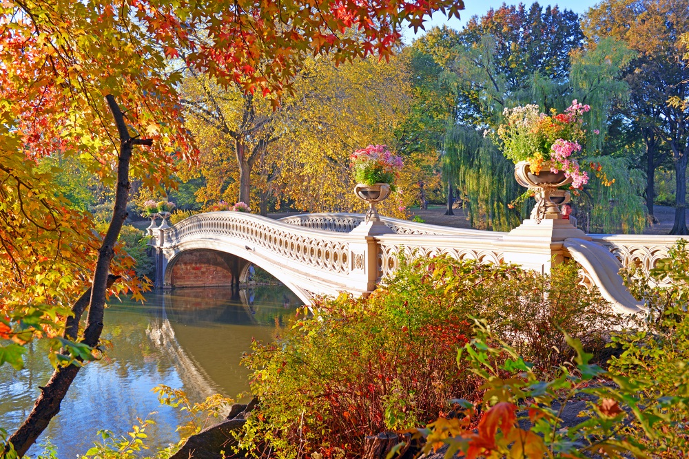fall_foliage_central_park_new_york
