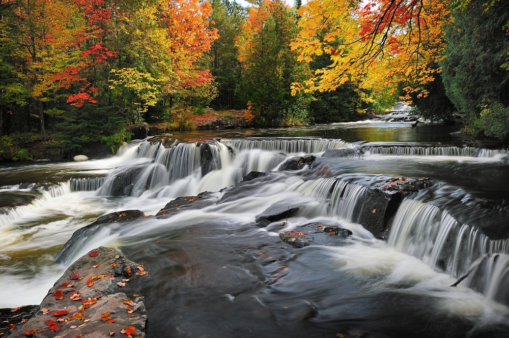 fall_foliage_michigan