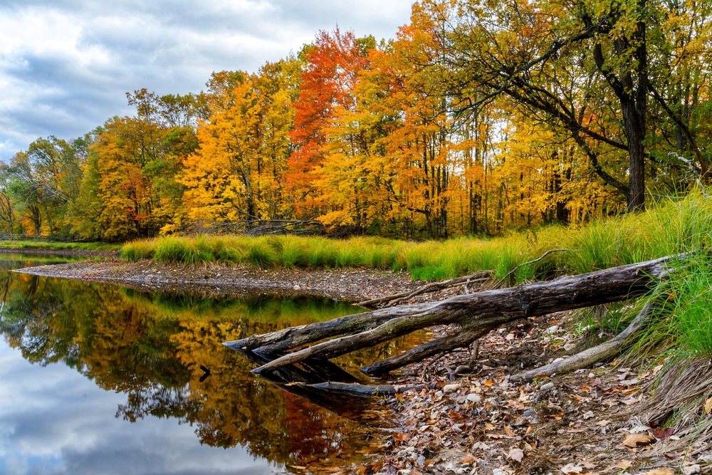 fall_foliage_wisconsin