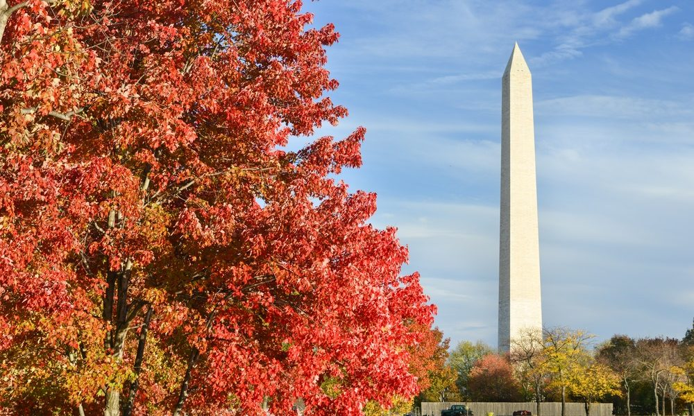 Top 10 US Cities To Visit In The Fall