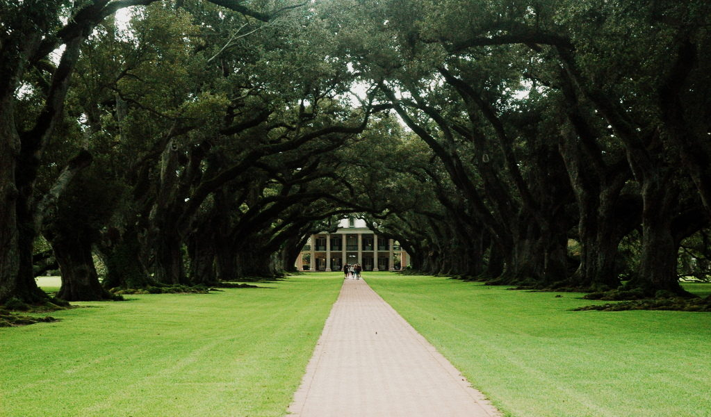 A Historical Journey Through New Orleans' Oak Alley Plantation