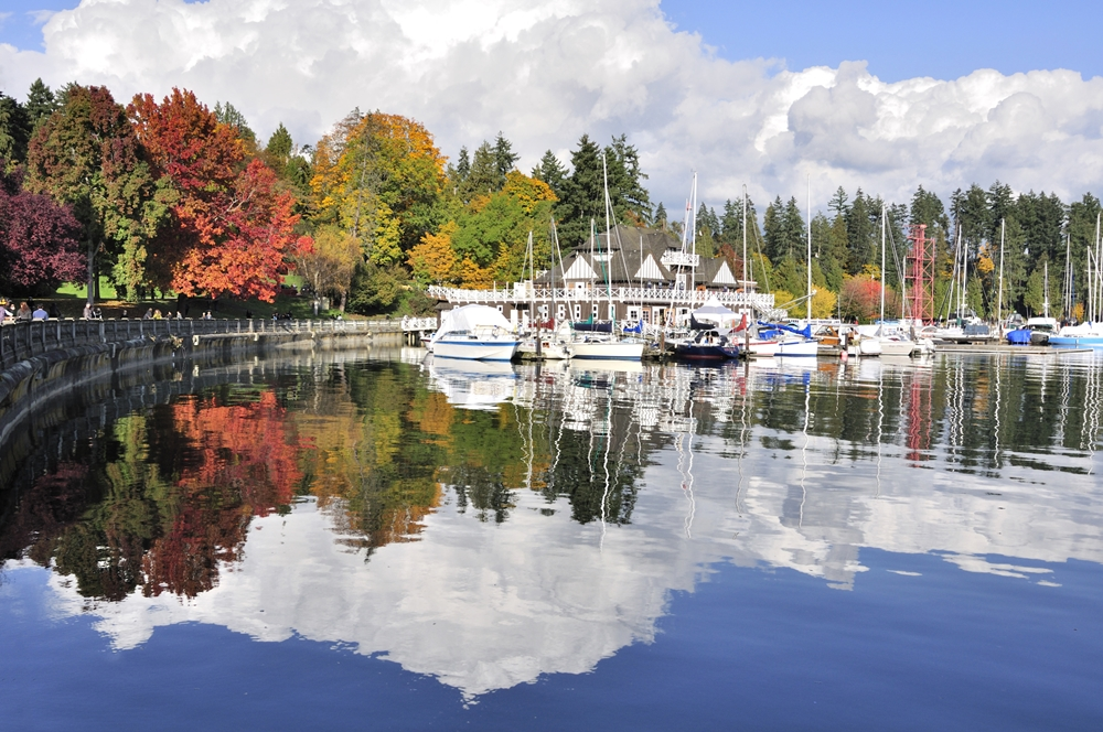 Colorful Stanley Park in the autumn afternoon