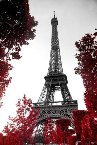 eifel tower trees (1)