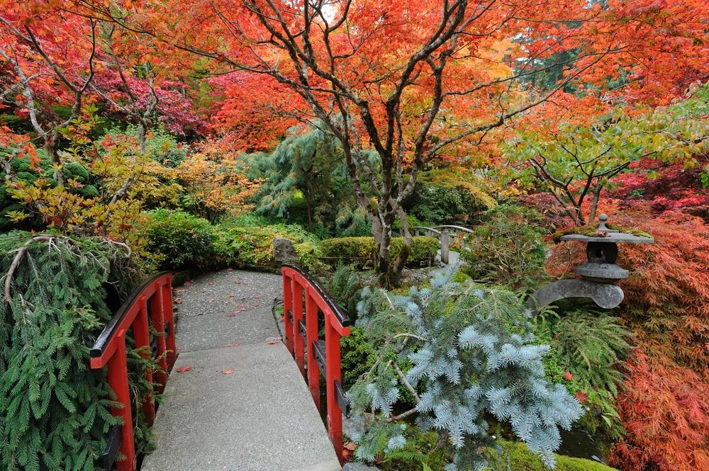japanese_barden_butchart_gardens