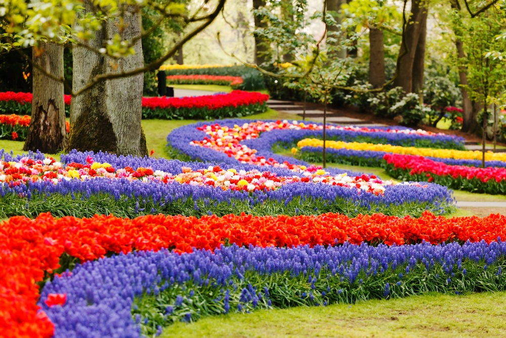 keukenhof_gardens