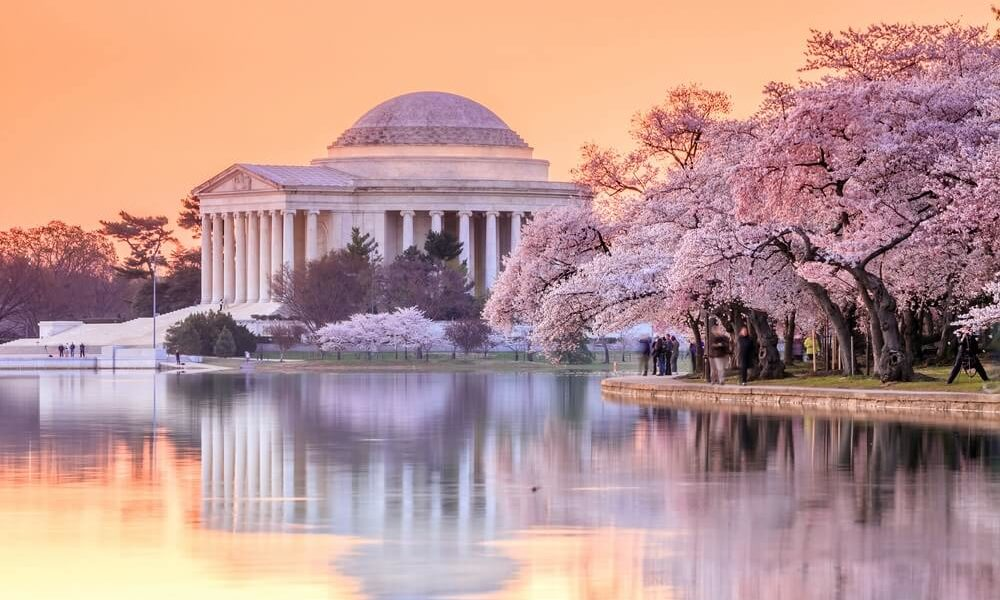 Spring Guide: Washington, D.C. Cherry Blossom Festival