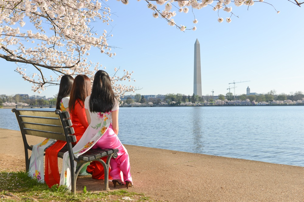 washington_monument_cherry_blossom_festival