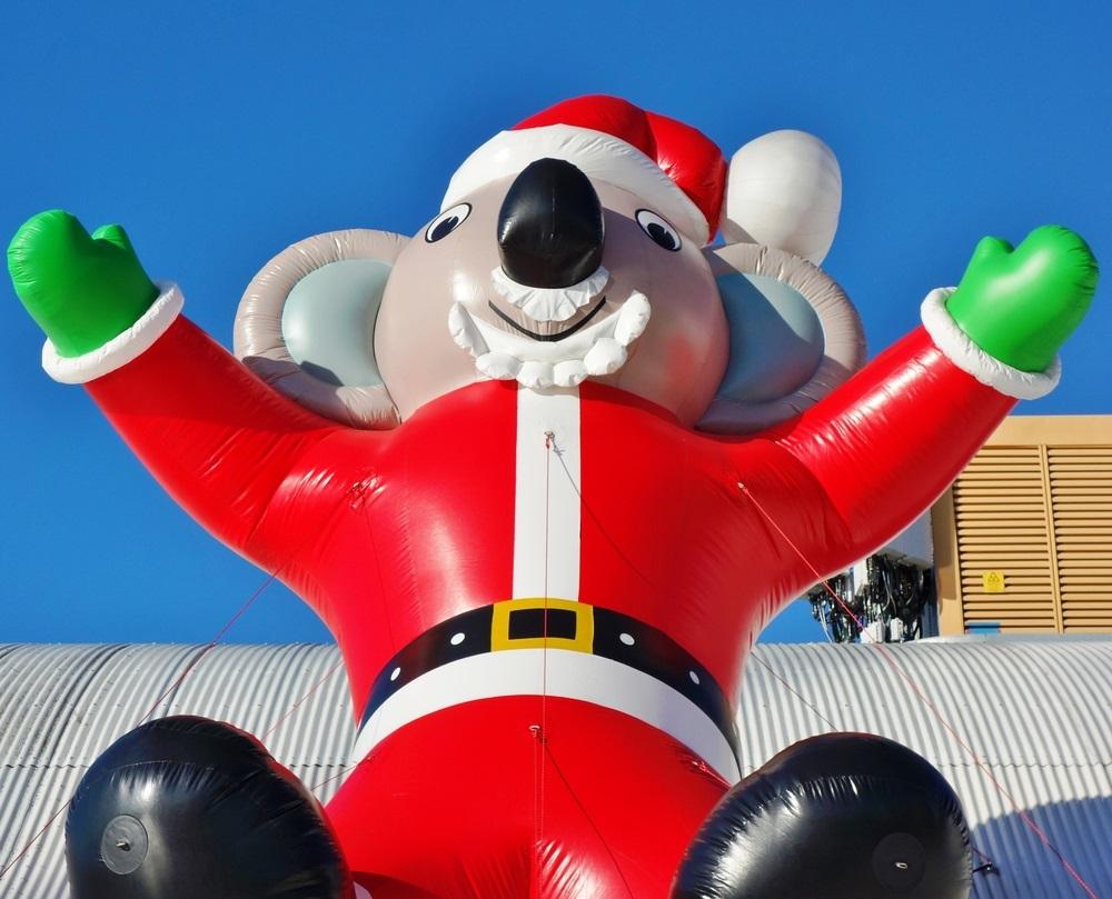 koala_christmas_eqroy