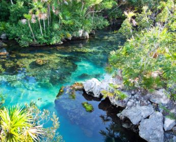Cenote near Cancun