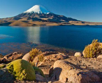 Chungara Lake in the shadow of Parinacota Volcano