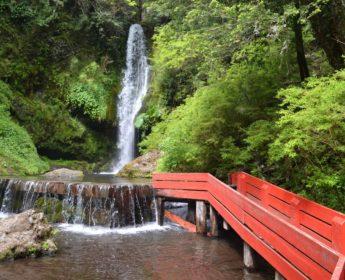 Hot Springs near Pucon