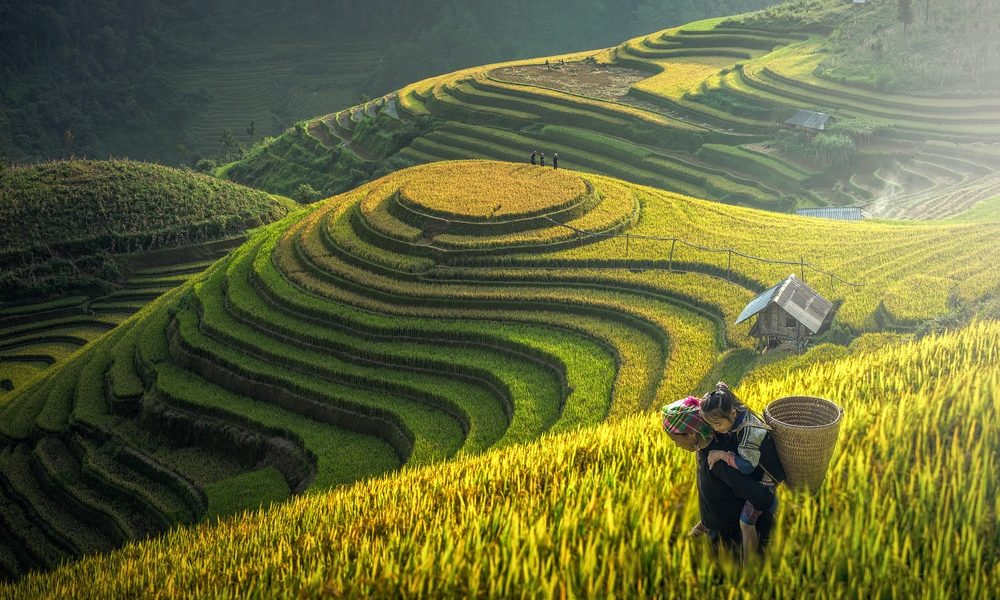Vietnam Travel Guide: The 3 Glorious Regions