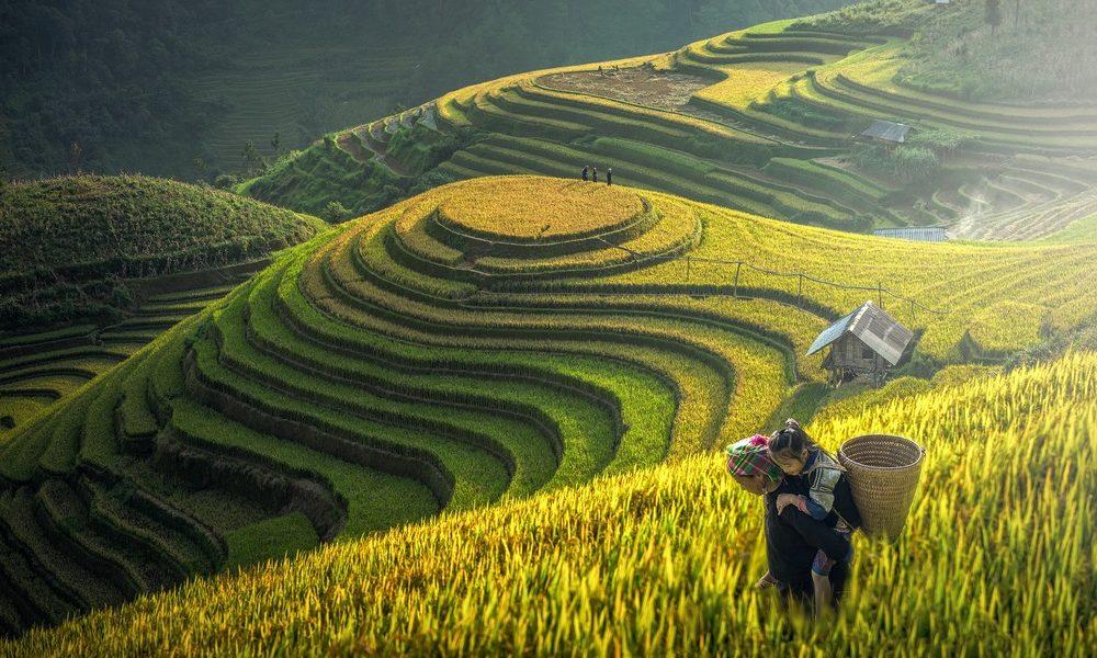 Vietnam Travel Guide: The 3 Glorious Regions | Tours4fun