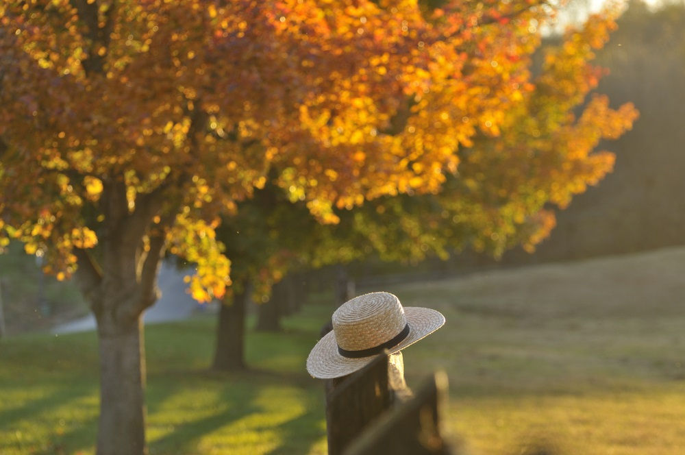 lancaster_autumn