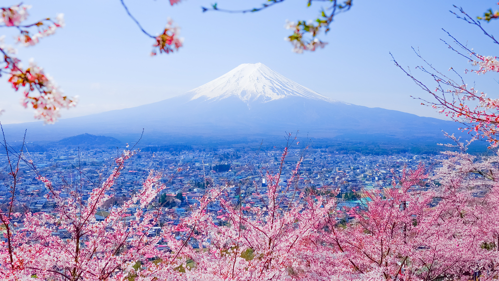 What is the Best Time to Visit Japan?