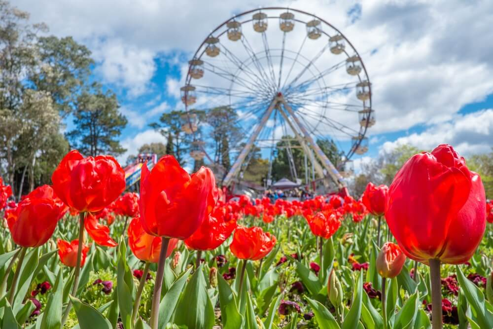 Floriade Festival in Canberra