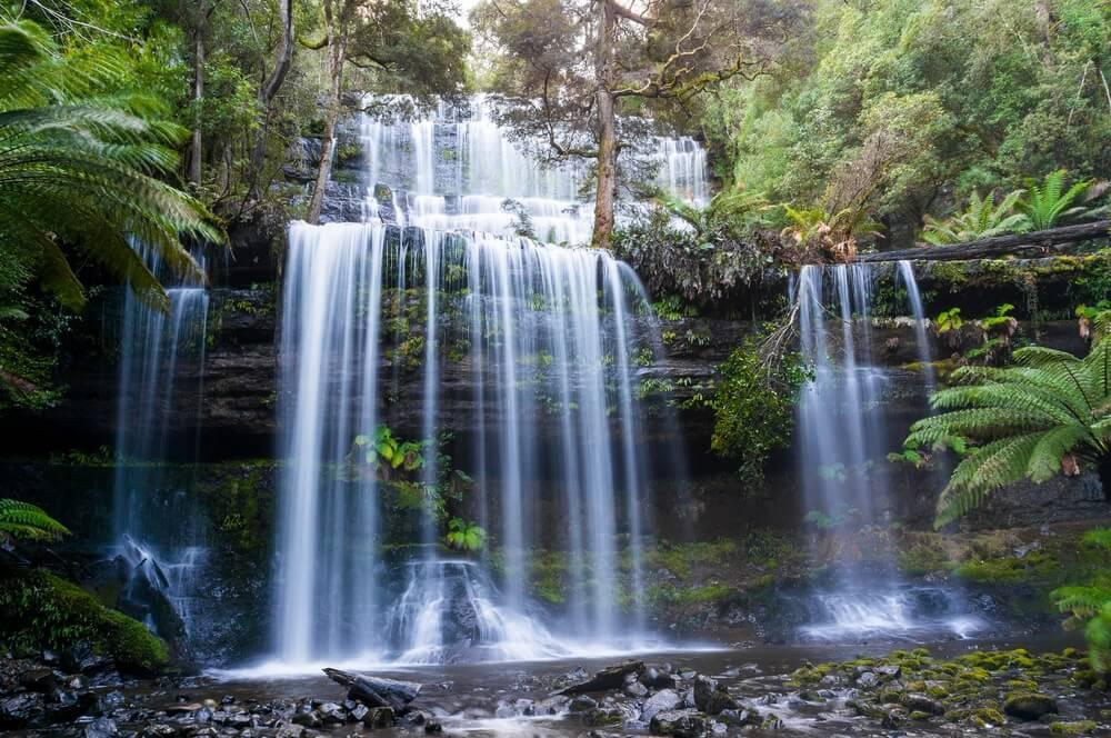 Russell Fall in Tasmania