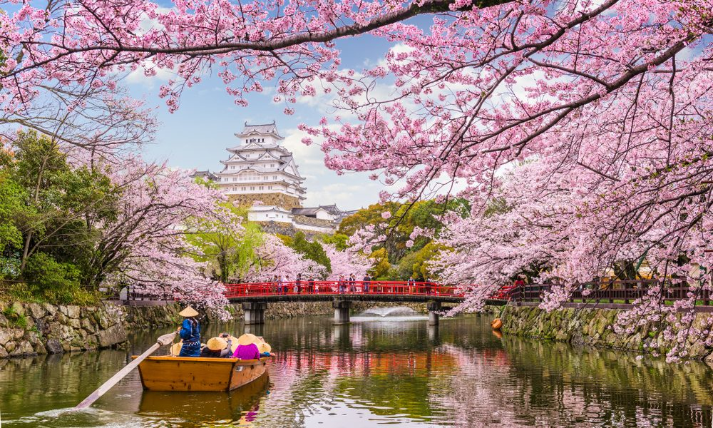 Spring 2019: Where to See Cherry Blossoms Around the World
