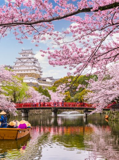 Top 9 Places to Visit in 2019